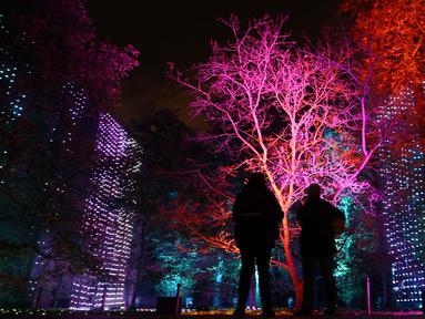 """Pengunjung melihat instalasi cahaya yang berjudul 'Waterfalls' pada sesi pemotretan di Kew Gardens, London, Selasa (19/11/2019). Pemasangan lampu tersebut untuk menyambut Natal dan peluncuran acara """"Christmas at Kew Gardens"""". (Daniel LEAL-OLIVAS / AFP)"""