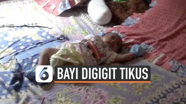 Warga desa Pasir Jambu Kabupaten Bogor resah dengan peristiwa bayi digiit tikus yang terjadi di kampungnya. Mereka  selalu menggendong bayinya kemanapun pergi.