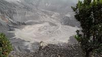 Kawah Gunung Tangkuban Parahu (Liputan6.com/Komarudin)