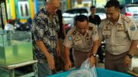 Tim SKIPM Palembang dan instansi terkait menemukan lima ekor Ikan Aligator yang dijual bebas di Pasar Tradisional 16 Ilir Palembang (Dok.Humas SKIPM Palembang / Nefri Inge)