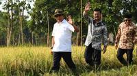 Menteri Pertanian Syahrul Yasin Limpo (tengah)