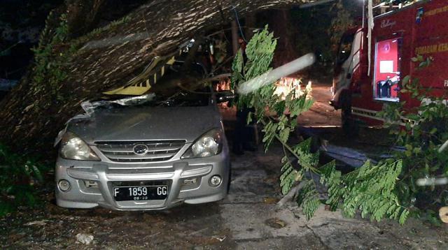 Pohon tumbang menimpa sebuah mobil di Bogor.