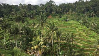 Story Telling, Cara Wisata Budaya di Indonesia Beradaptasi dengan Situasi Pandemi