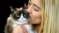 Si Kucing Pemarah alias The Grumpy Cat (AP via The Washington Post)