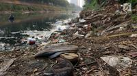 Ceceran sampah dan endapan lumpur terlihat di Kali Ciliwung Banjir Kanal Barat, Jalan Galunggung, Jakarta, Selasa (30/7/2019). Endapan lumpur dan ceceran sampah membuat Kali Ciliwung Banjir Kanal Barat terlihat kotor dan kumuh. (Liputan6.com/Helmi Fithriansyah)