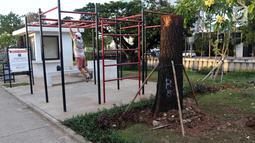 Warga beraktivitas di sekitar pohon-pohon Sudirman yang dipindah ke kawasan RTH Kalijodo, Jakarta Utara, Kamis (15/3). Penanaman pohon dilakukan pada malam hari agar tidak mengganggu aktivitas pengunjung. (Liputan6.com/Arya Manggala)