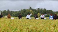 Kunjungan kerja Menteri Pertanian Amran Sulaiman di Sukabumi (Foto: Kementan)
