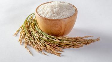 ilustrasi beras