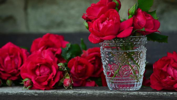 6 Ciri Ciri Bunga Mawar Jenis Dan Maknanya Yang Jarang Diketahui Citizen6 Liputan6 Com