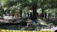 Mayat HP (47) seorang petani ditemukan meninggal dunia di kebun sawit di Desa Tikke, Kecamatan Tikke Raya, Kabupaten Pasangkayu