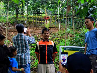 Wisatawan mengantre berfoto dengan Bunga Bangkai di Kebun Raya Bogor, Minggu (5/1/2020). Hari terakhir liburan sekolah, Kebun Raya Bogor menjadi tujuan wisata favorit bagi warga. Salah satu objek yang paling menarik di sana adalah Bunga Bangkai. (Merdeka.com/Fotografer Magang: Muhammad Fayyadh)
