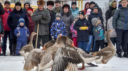 Orang-orang melihat pertarungan angsa tradisional di desa Kalikino sekitar 450 km di luar Moskow, Rusia (17/3). (AFP Photo/Vasily Maximov)