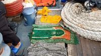 Penyelam dari kepolisian menemukan sajadah hijau yang diduga milik seorang penumpang Faisal Rahman (dok. TikTok/@r.awing08/https://www.tiktok.com/@r.awing08/Komarudin)