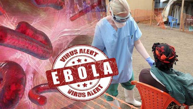 virusi ebola)