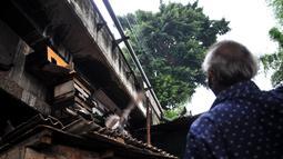Warga memberi makan burung dara yang diternak di kolong jembatan, Jakarta, Kamis (14/2). Kolong jembatan tersebut digunakan oleh warga setempat untuk menernak hewan dan membuat arang akibat kurangnya lahan. (Merdeka.com/Iqbal S. Nugroho)