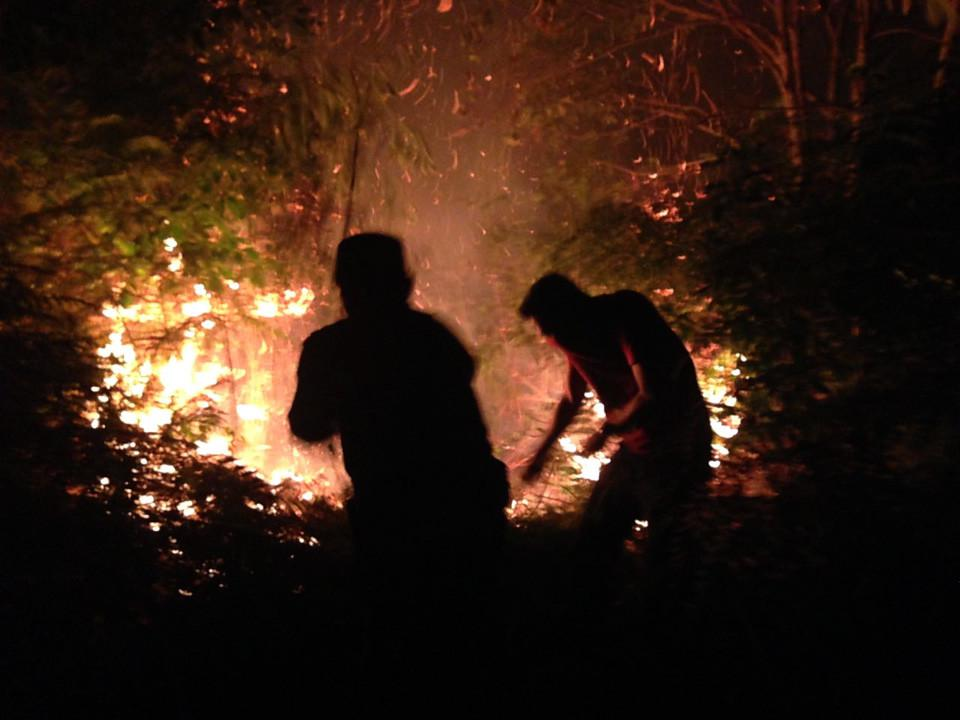 Petugas gabungan berupaya mendinginkan lahan gambut di Bengkalis, Riau, supaya baranya tidak memercikkan api lagi. (Liputan6.com/M Syukur)