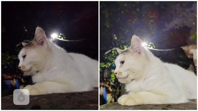 Hasil foto Huawei P40 Pro Plus malam hari, tanpa night mode (kiri) dan night mode (kanan) (Liputan6.com/ Agustin Setyo W)