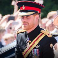 Seorang sumber yang mengaku dekat dengan keluarga Kerajaan Inggris mengungkapkan pernyataan kontroversial.(AP Photo)