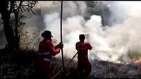 Tugas terberat para penantang maut di Taman Nasional Bombana bukanlah api, tapi warga yang belum sadar akan bahaya api di dalam taman nasional. (Liputan6.com/Ahmad Akbar Fua)