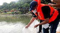 Ketua DPP PDIP Djarot Saiful Hidayat menabur ribuan benih ikan di Waduk Cincin, Jakarta Utara. (Istimewa)