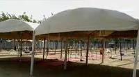 Ada 52 maktab yang akan digunakan jemaah haji Indonesia saat wukuf.