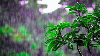Doa Ketika Turun Hujan Lengkap Beserta Artinya, Agar Terlindung dari Mara Bahaya