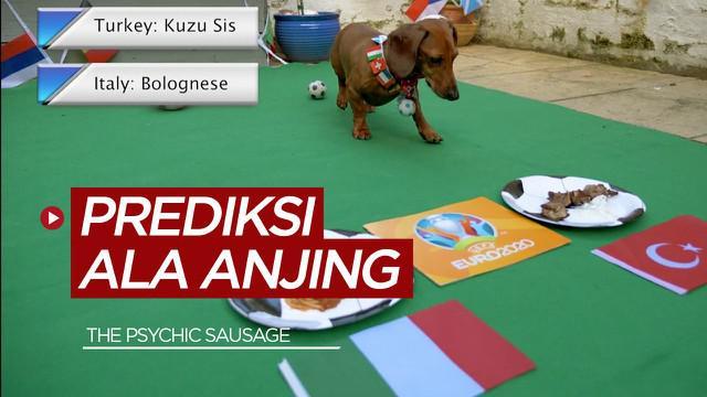 """Berita video anjing """"The Psychic Sausage"""" membuat prediksi laga perdana Euro 2021, Italia Vs Turki"""