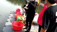 Ketua DPP Bidang Kebudayaan PDI Perjuangan yang juga Menteri Sosial Tri Rismaharini dalam acara penanaman pohon dan melepaskan bibit ikan di Waduk Cincin, Tanjung Priok, Jakarta Utara, Minggu (21/2/2021). (Liputan6.com/Fachrur Rozie)