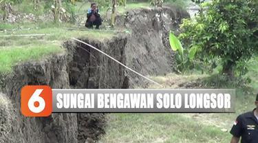 Dikhawatirkan bila tidak segera ditangani, air Bengawan Solo akan mengerus tanggul dan mengakibatkannya jebol.