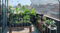 Garden rooftop Ayuda Bing Slamet. (dok. Instagram @ayudiac/https://www.instagram.com/p/CAErcWtHrvO/Dinny Mutiah)