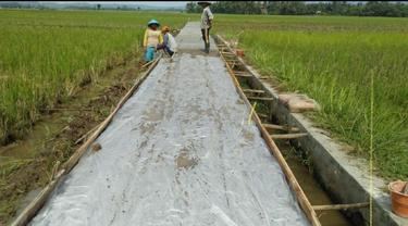 Petani Hingga Nelayan di Garut Rasakan Manfaat Jalan Usaha Tani Kementan
