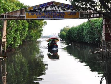 Wisata Mangrove Bekasi