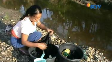 Sulit dapatkan air bersih, warga di Karawang, Jawa Barat, terpaksa gunakan air sungai bercampur limbah kotoran sapi.