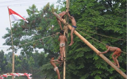 Panjat pinang yang bikin pening   Foto: copyright merdeka.com/imam buhori