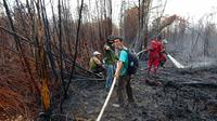 Pendinginan lahan bekas terbakar oleh BBKSDA Riau di Cagar Biosfer Giam Siak Kecil. (Liputan6.com/M Syukur)