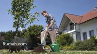 Pekarangan dengan pepohonan bermanfaat mengurangi sinar matahari yang 'jatuh' langsung ke rumah. Rumah pun jadi lebih sejuk.
