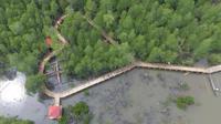 Jalur cinta di hutan mangrove itu dibangun menggunakan dana desa. (dok. istimewa)