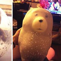 Boneka Teddy Bear ini buat kado Valentine, tapi balonnya keburu menyusut. (Sumber Foto: Bored Panda)