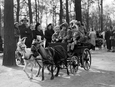 Anak-anak menikmati jalan-jalan naik kereta yang ditarik oleh kambing di The Champs Elysées Avenue, Paris, Prancis, 23 Maret 1947. (AFP)