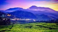 Kawasan Puncak Bogor tak hanya menjadi magnet kuat bagi warga Jakarta dan sekitarnya untuk berlibur, kini juga menjadi peluang investasi yang menggiurkan.