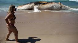 Seorang wanita mengambil gambar bangkai paus bungkuk yang terdampar di tepi pantai Ipanema, Rio de Janeiro, Brasil, Rabu (15/11). Petugas setempat meminta warga untuk tidak mendekati bangkai paus yang sudah mulai membusuk itu. (AFP PHOTO / Leo Correa)