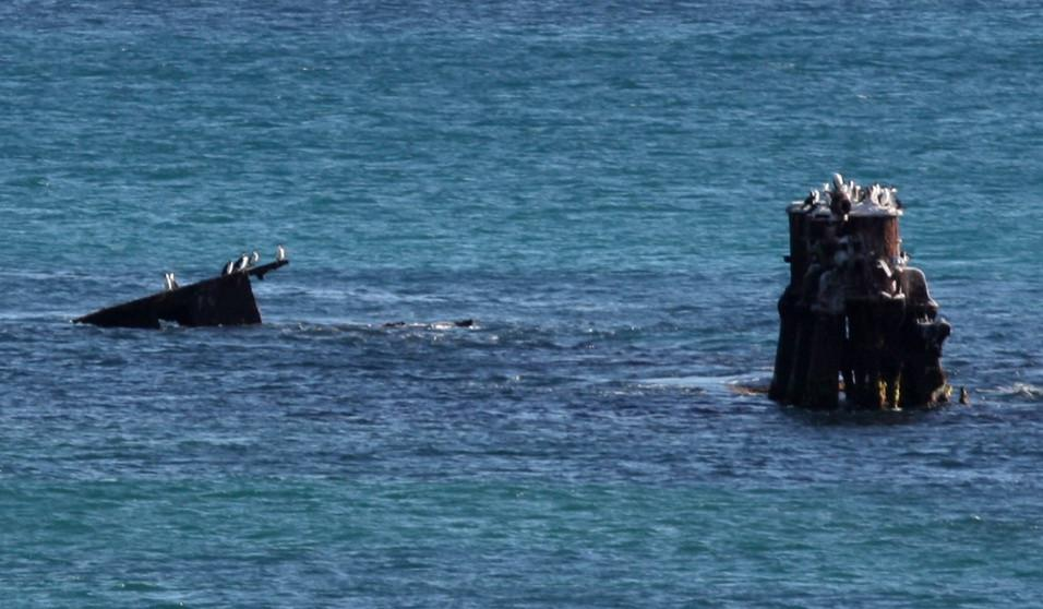 Kapal SS Alkimos  (Wikipedia/LovePerth.com.au)