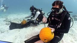 Dua penyelam sedang mengukir labu saat ambil bagian dalam Kontes Mengukir Labu Bawah Air di Florida Keys, Florida, Minggu (14/10). Dengan 1 labu dan satu pisau, kontestan harus membuat mimik Jack-o-Lantern terbaik. (Frazier Nivens/various sources/AFP)