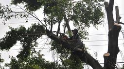 Petugas Suku Dinas Kehutanan Jakarta Timur menebang pohon lebat yang berada di pinggir Jalan I Gusti Ngurah Rai, Jakarta, Rabu (25/7). Penebangan ini merupakan kegiatan rutin yang dilakukan Suku Dinas Kehutanan Jakarta Timur. (Merdeka.com/Iqbal Nugroho)