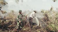 Kebakaran lahan terluas di Riau terjadi di Kabupaten Meranti. Satu-satunya kabupaten yang bebas dari kebakaran adalah Kuantan Singingi. (Liputan6.com/M Syukur)