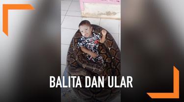 Seorang balita tetap tenang saat tidur dan bermain di lilitan ular piton raksasa.