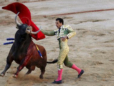 20150707-Matador vs Banteng-Spanyol