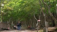 Drama Korea It's Okay Pernah Syuting di Daegu Forest, Daegu, yang Terkena Wabah Corona. (dok.Instagram @daegu_forest/https://www.instagram.com/p/B3JZP68laFP/Henry)