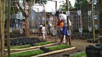 Pengurus karang taruna Rw 06 Suradinaya Kota Cirebon mengubah lahan kosong yang seram menjadi rumah pangan yang bermanfaat bagi warga sekitar. Foto (Liputan6.com / Panji Prayitno)