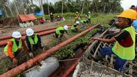 Karyawan PLN mengangkat tiang untuk membangun jaringan listrik di pedesaan Riau. (Liputan6.com/M Syukur)